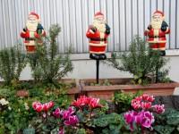 ガーデン冬サンタ
